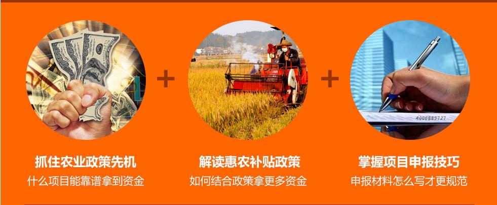 4 农业项目策划:扶持资金申报&立项可研报告&招商计划书