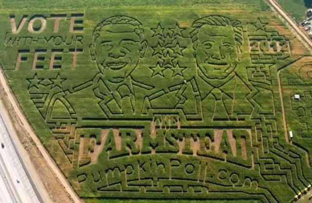 创意农业需用头脑经营,靠文化创业