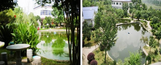 长沙县雅园度假村